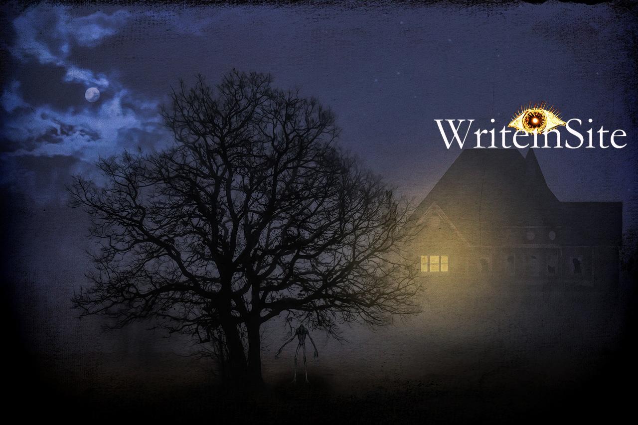 WriteinSite
